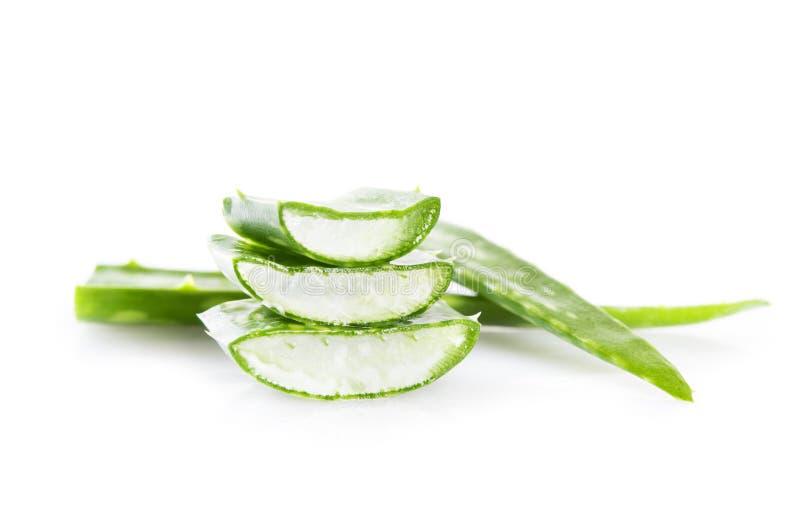 Aloe vera royalty free stock images