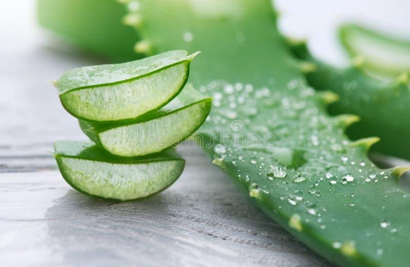 Aloe Vera closeup. Sliced Aloevera natural organic renewal cosmetics, alternative medicine. Organic skincare concept stock photography