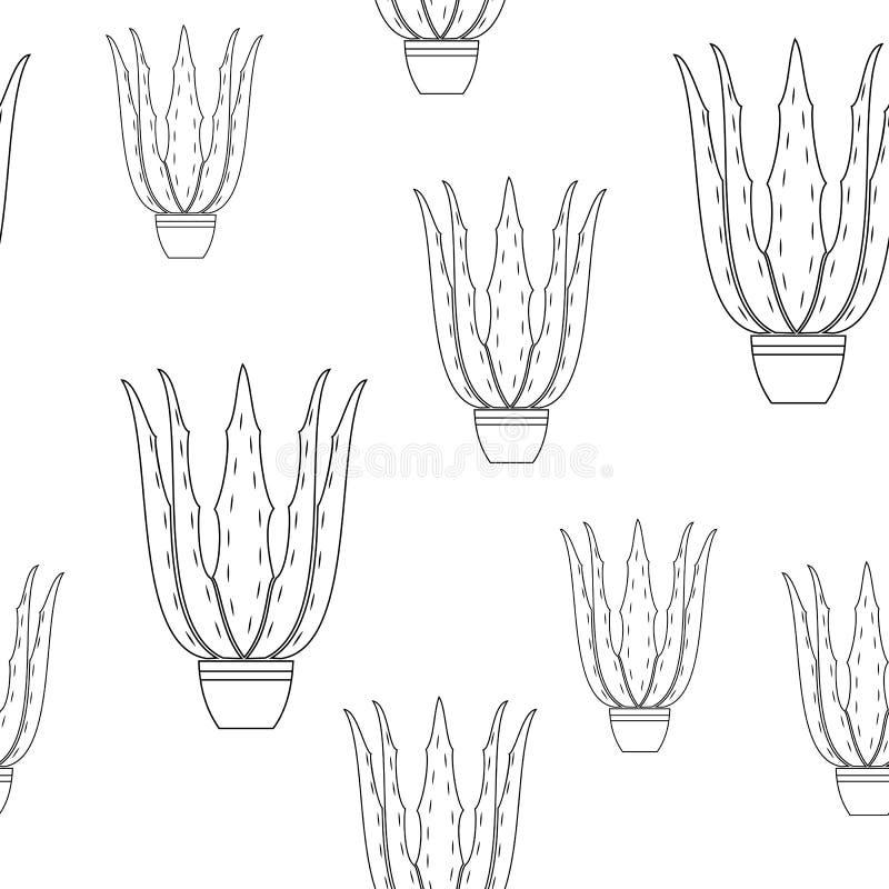 Aloe vera del vaso da fiori su un fondo bianco Immagine grafica Bello reticolo Involucro di regalo Illustrazione di vettore illustrazione di stock