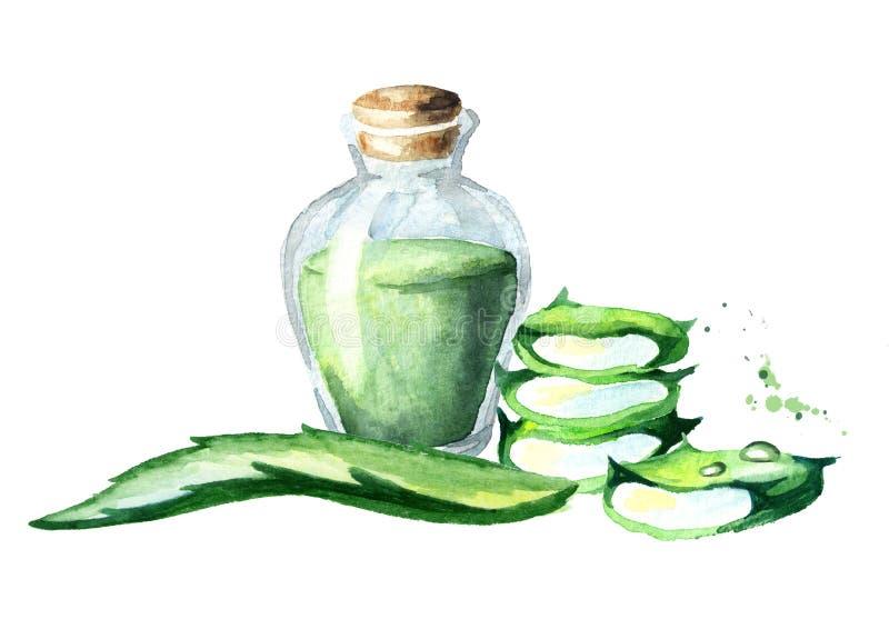 Aloe vera extract. Watercolor hand drawn illustrationÑŽ. Aloe vera extract. Watercolor hand drawn illustration stock illustration