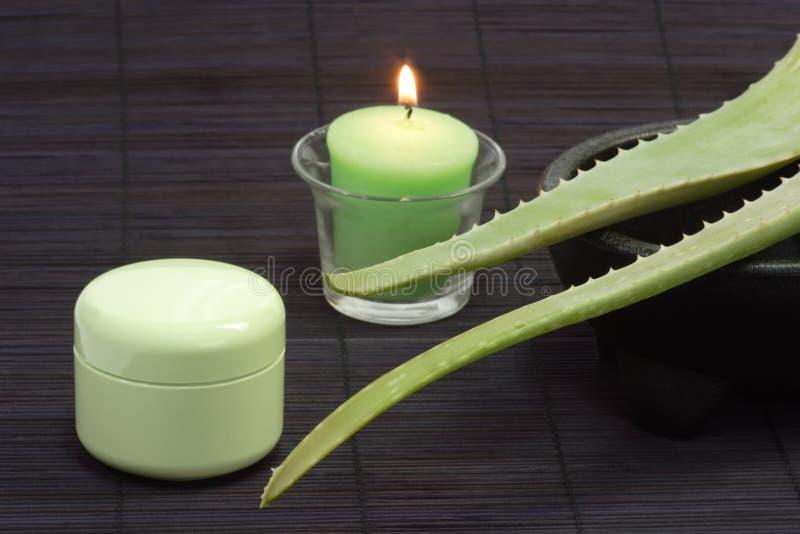 Aloe Vera Face Cream Royalty Free Stock Image