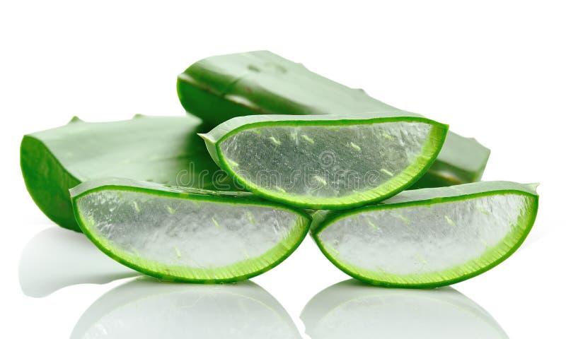 Aloe vera fresh leaf isolated over white stock images