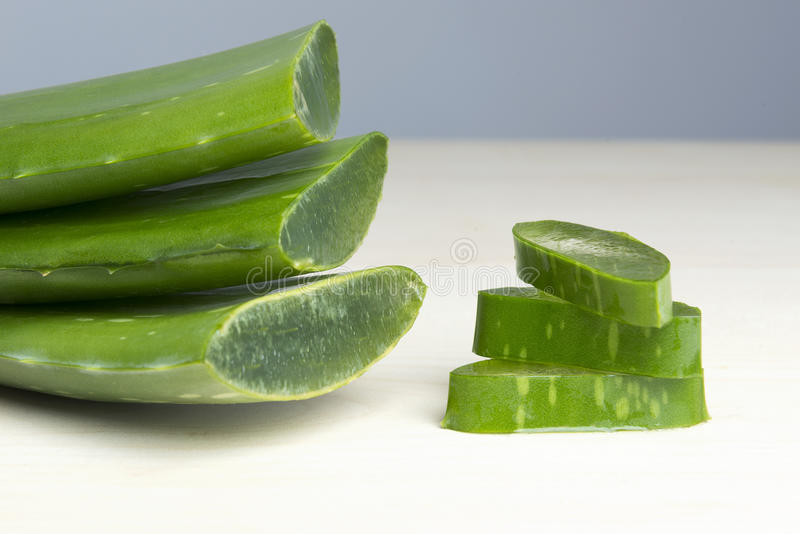 Aloe Vera. Fresh aloe vera leaves closeup royalty free stock images