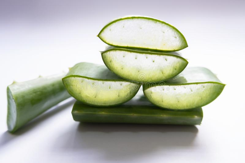 Aloe vera Gel that has both substances to cure scars And used to produce health drinks Or cosmetics that are good for the skin.  royalty free stock photos
