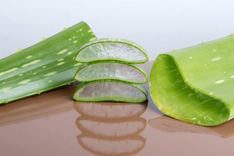 Aloe Vera. Green Aloe Vera leaf background stock image