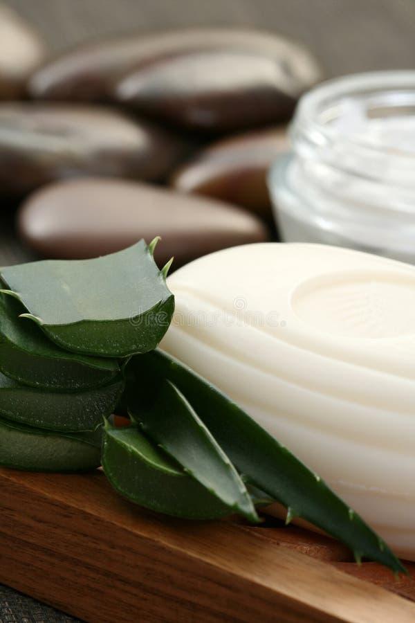 Download Aloe vera grooming product stock photo. Image of aloe - 6066370