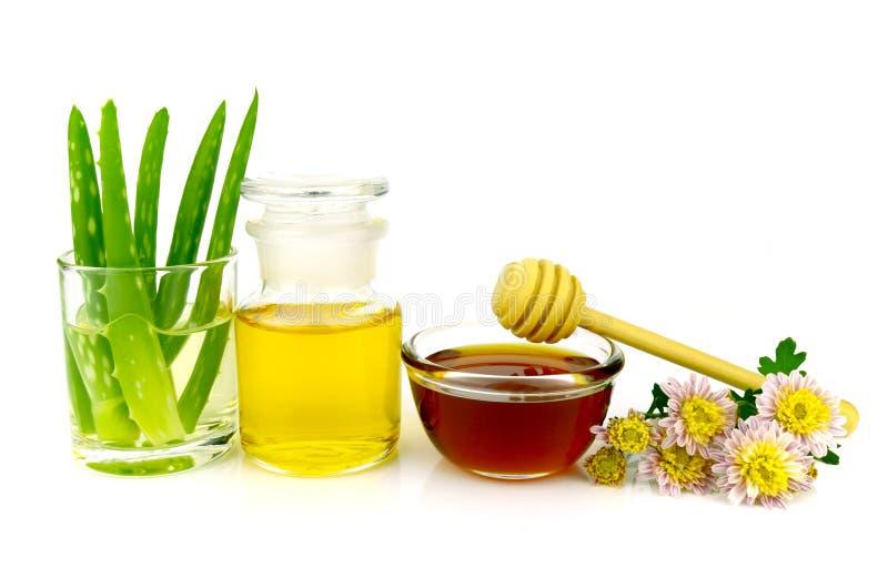 Aloe vera hair and facial treatment recipe. stock image
