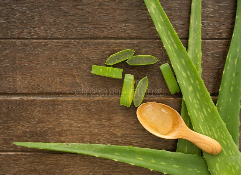 Aloe Vera-Hintergrund stockfotografie