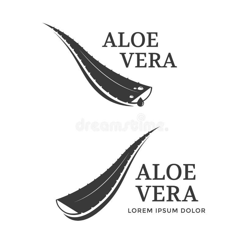 Aloe-Vera-Ikone vektor abbildung