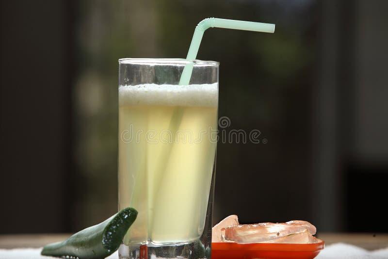 Aloe vera juice, soththu kaththazhai juice royalty free stock images