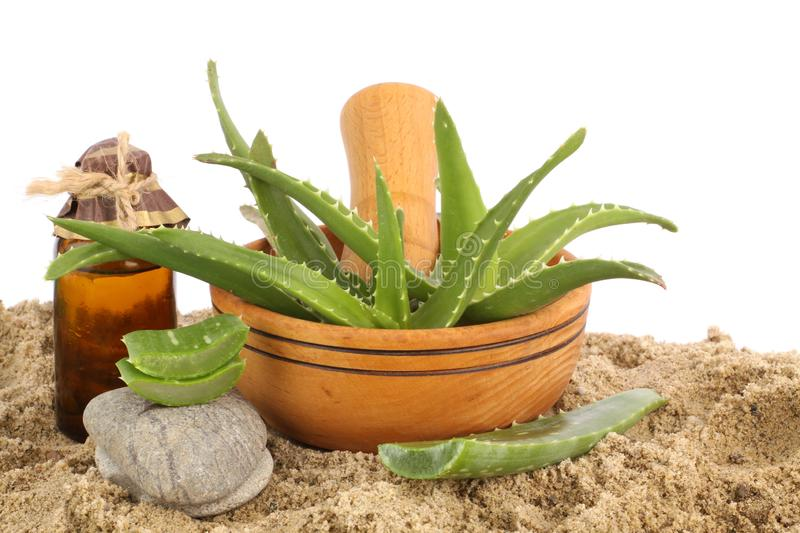 Aloe vera leafs in wooden dish stock photo