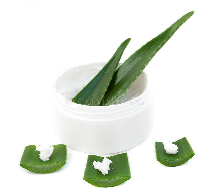 Aloe vera leaves and cream royalty free stock photography