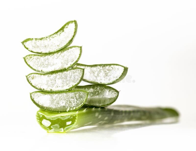 Aloe Vera Leaves. Fresh sliced aloe vera leaves isolated on white background royalty free stock photography