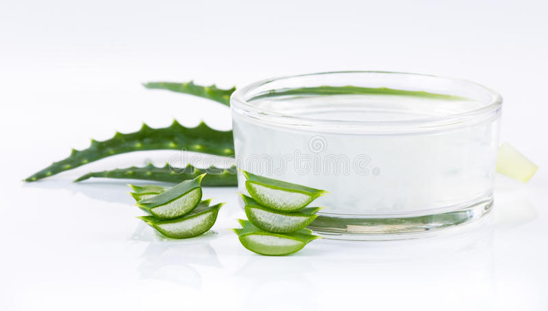 Aloe Vera leaves royalty free stock photography