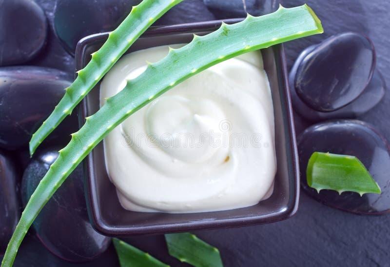 Aloe Vera med lotionasken royaltyfria foton