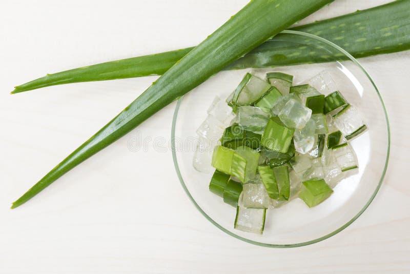 Aloe Vera. Natural aloe vera organic scin care cosmetics specks stock image