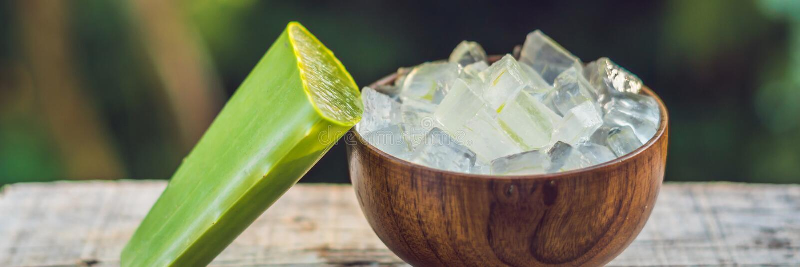 Aloe vera och aloekuber i en träbunke Aloe Vera stelnar nästan bruk i det mat-, medicin- och skönhetbranschBANRET, långt format arkivbilder