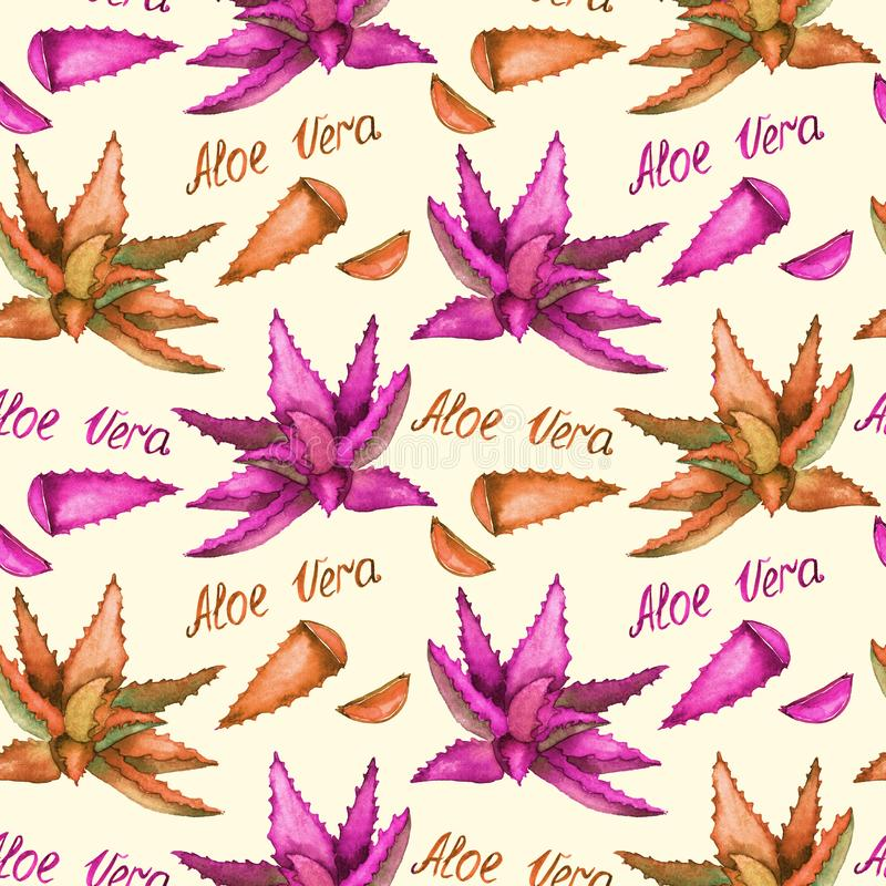 Aloe Vera pink and orange plant and cut leaves, hand painted watercolor illustration with inscription, seamless pattern design vector illustration