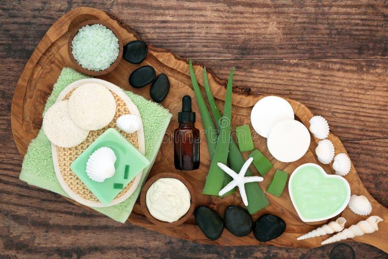 Aloe Vera Skin Care Vegan Beauty Treatment royalty free stock images
