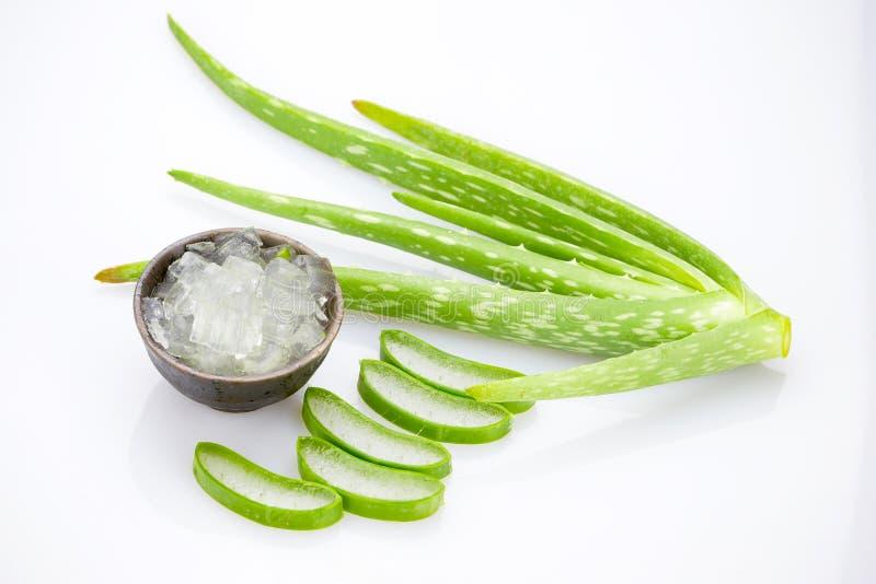Aloe vera slice on white background.  royalty free stock image