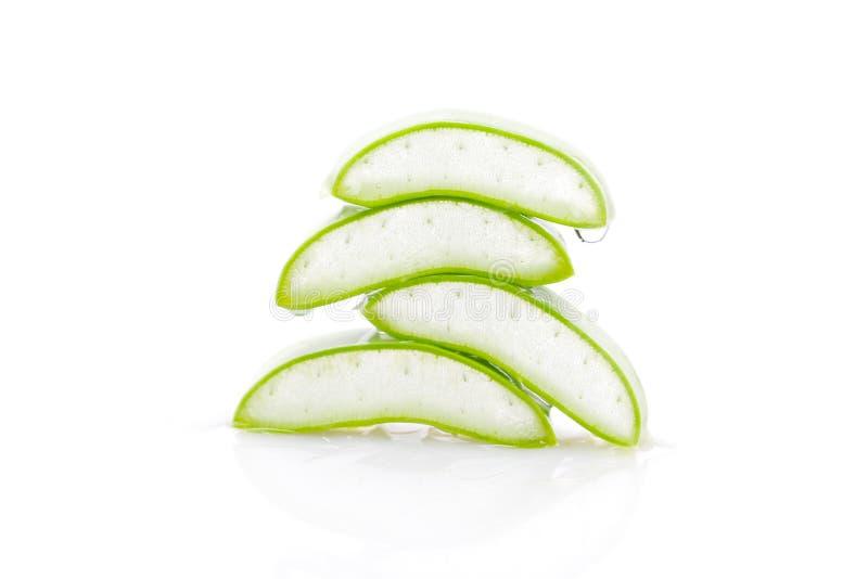 Aloe vera slice on white background.  stock images
