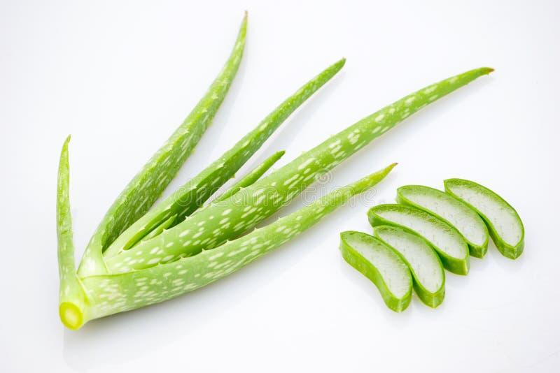 Aloe vera slice on white background.  stock photography