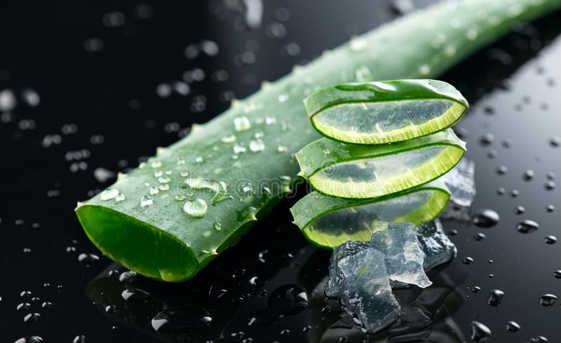 Aloe Vera slices closeup. Aloevera plant leaf gel, natural organic renewal cosmetics, alternative medicine stock image