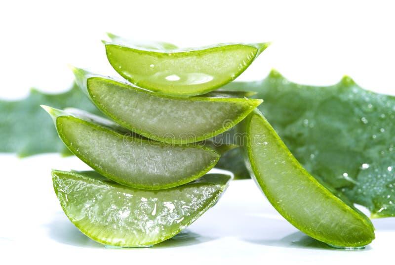 Aloe vera slices. Organic aloe vera slices on white background stock photo