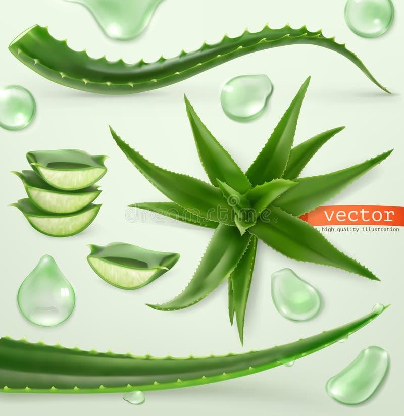 Aloe Vera und Tropfen Medizinische Anlage Drei Farbikonen auf Pappumbauten stock abbildung