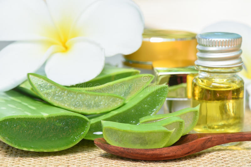 Aloe Vera use in spa for skincare. And cosmetic royalty free stock photos