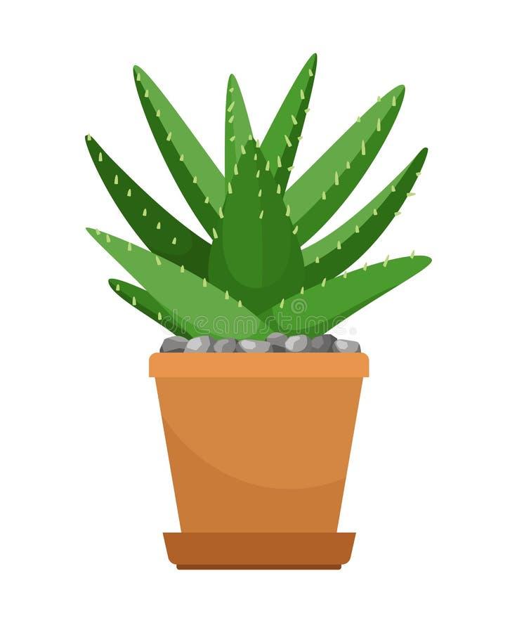 Aloe vera in vaso di fiore royalty illustrazione gratis
