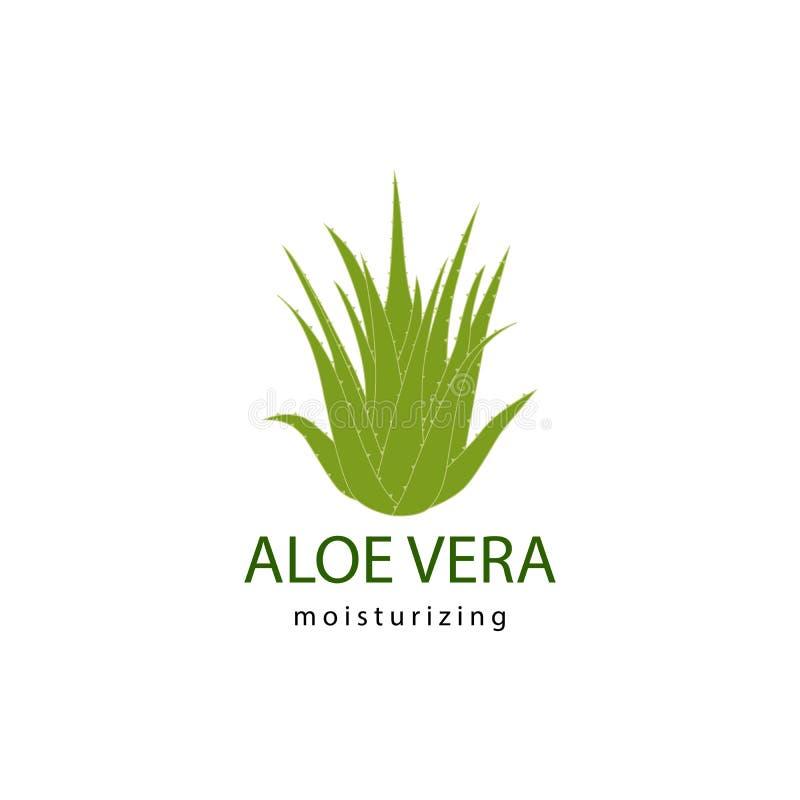 Aloe vera stock illustration