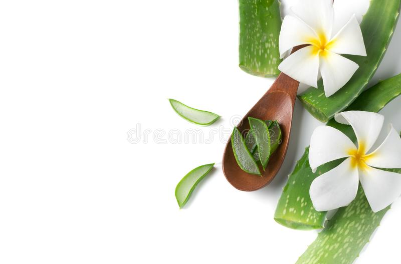 Aloe vera on wood spoon isolated on. White background, top view and copy space stock photo