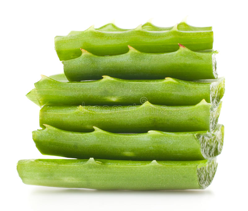 Aloeblätter lizenzfreies stockfoto