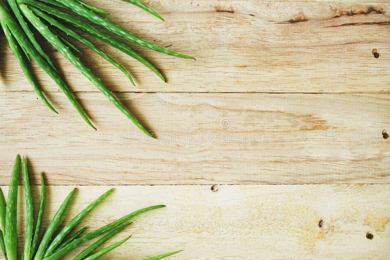 Aloes Vera na drewnianym stołowym tle, kopii przestrzeń, skóry opieki pojęcie obrazy royalty free