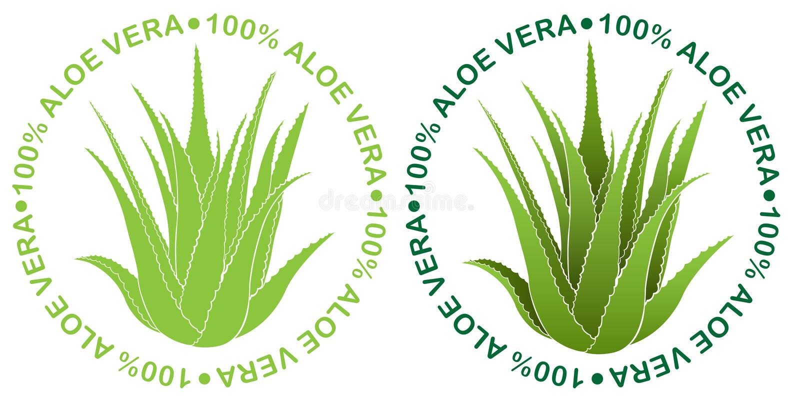 Aloevera-Dichtung 100% lizenzfreie abbildung