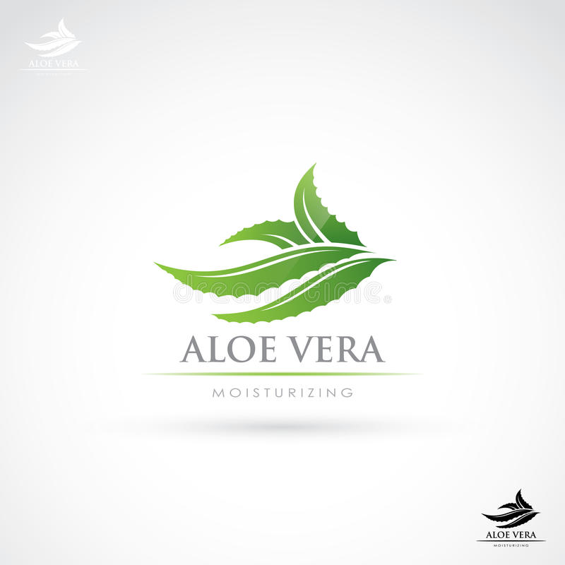 AloeVera etikett royaltyfri illustrationer