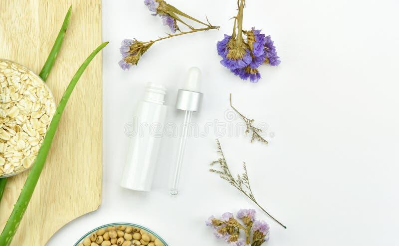 Aloevera växt, naturlig skincareskönhetsprodukt Kosmetiska flaskbehållare med gröna växt- sidor royaltyfri bild