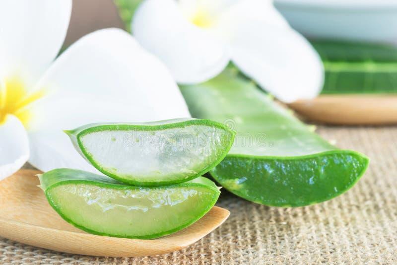 Aloeveragebruik in kuuroord voor huid treatmaent of skic zorg stock afbeelding