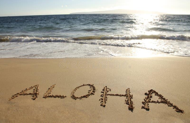 Aloha fotos de stock