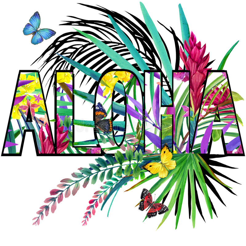 Aloha. Aloha Tee Shirt design. Tropical plants watercolor stock illustration