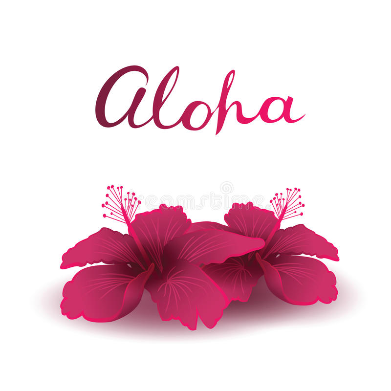 Free Aloha And Hibiscuses Stock Images - 74913114