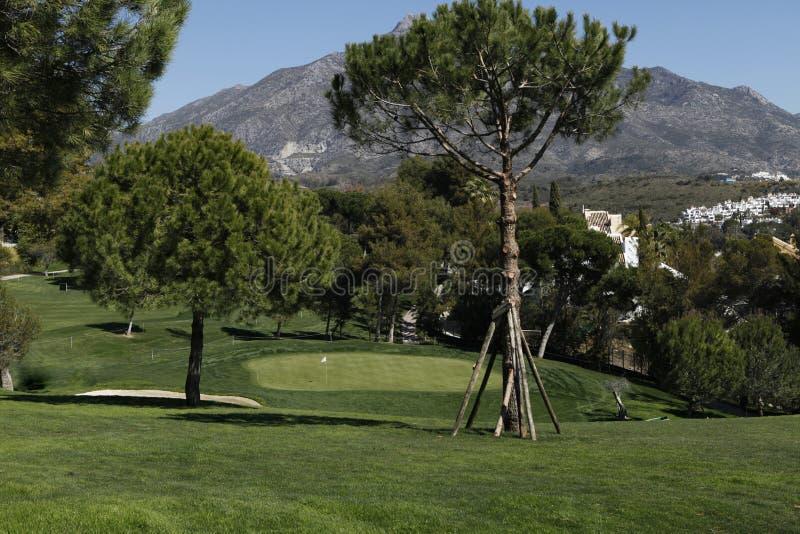 Aloha campo de golfe em Marbella, Spain fotografia de stock royalty free