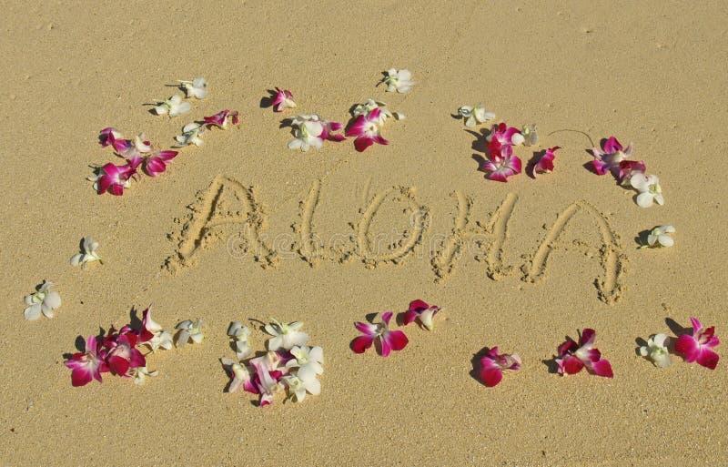 Aloha escrito en la arena con las orquídeas en Hawaii imagen de archivo