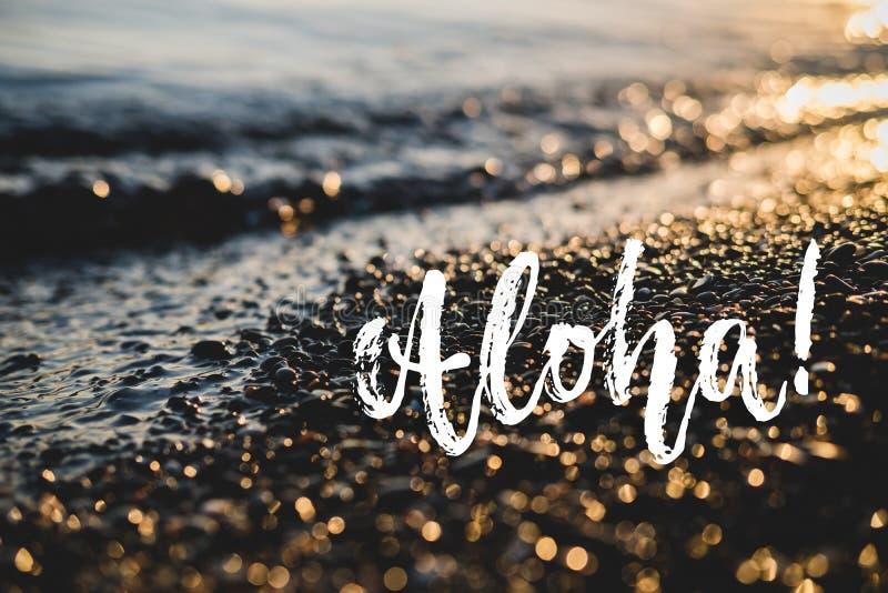 Aloha - frase positiva tirada mão da rotulação do feriado no fundo do mar ou do oceano da praia Cita??es da tinta da escova do di imagens de stock