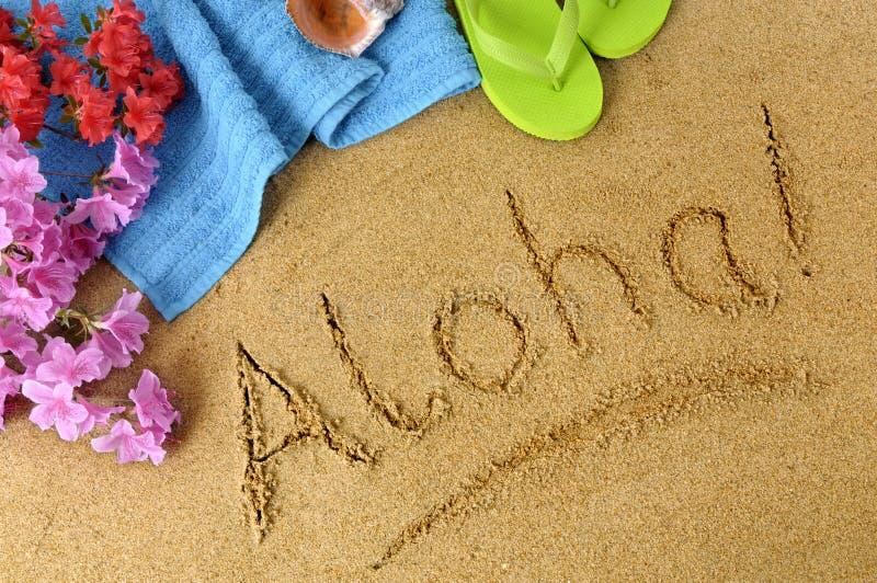 Aloha fundo da praia imagem de stock