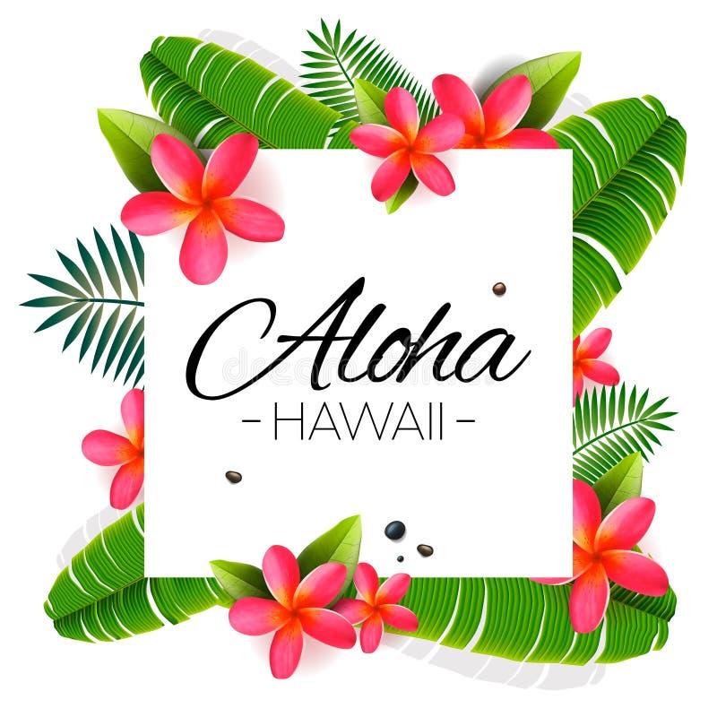Aloha Hawaii, palavra em folhas de palmeira, flores exóticas Ilustra??o do vetor ilustração stock