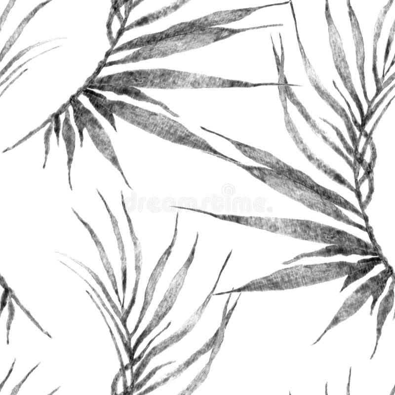 Aloha hawaiisches nahtloses Muster Aquarell gebogene Palme vektor abbildung
