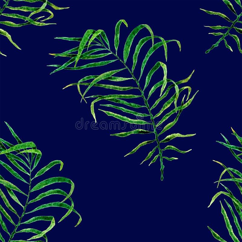 Aloha modelo incons?til hawaiano Acuarela que agita PAL imágenes de archivo libres de regalías