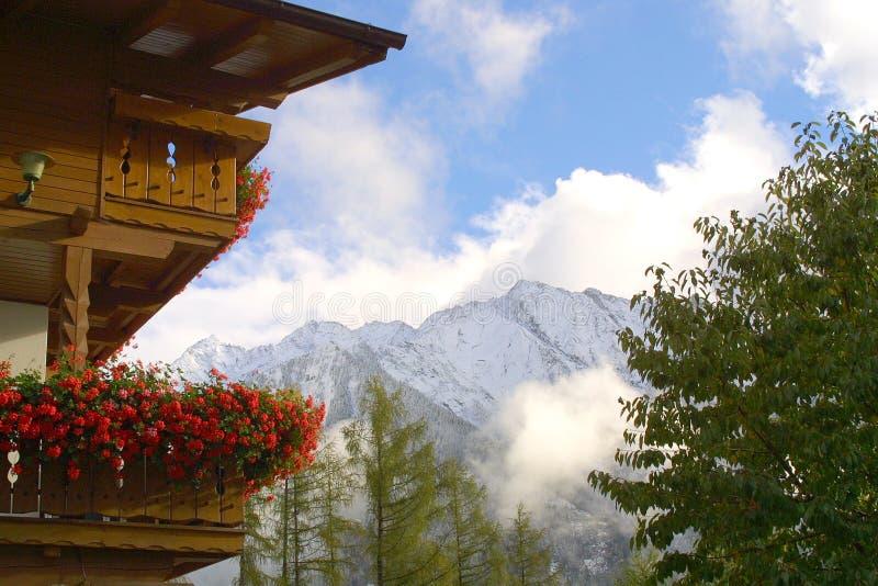 Alojamento da montanha - flores foto de stock royalty free